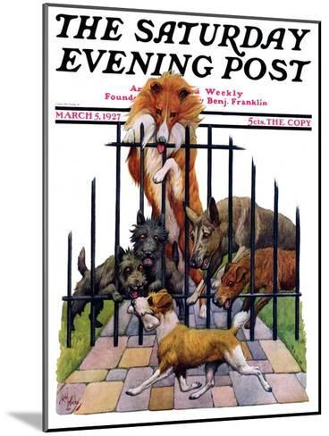 """""""Dog and His Bone,"""" Saturday Evening Post Cover, March 5, 1927-Robert L^ Dickey-Mounted Giclee Print"""