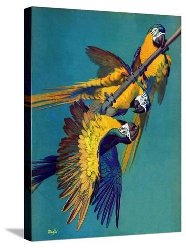 """""""Three Parrots,""""March 11, 1939-Julius Moessel-Stretched Canvas Print"""