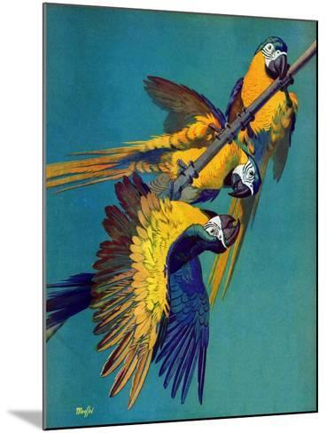 """""""Three Parrots,""""March 11, 1939-Julius Moessel-Mounted Giclee Print"""