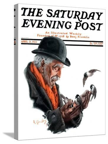 """""""Man Feeding Birds,"""" Saturday Evening Post Cover, April 21, 1923-R^ Bolles-Stretched Canvas Print"""