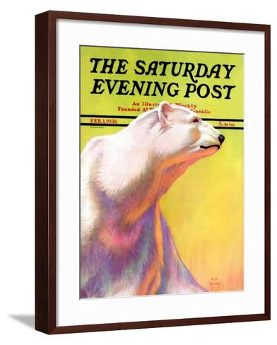 """Polar Bear,"" Saturday Evening Post Cover, February 1, 1936-Jack Murray-Framed Art Print"