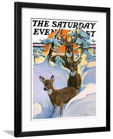 """Deer in Snow,"" Saturday Evening Post Cover, February 7, 1931-Paul Bransom-Framed Art Print"