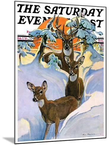 """""""Deer in Snow,"""" Saturday Evening Post Cover, February 7, 1931-Paul Bransom-Mounted Giclee Print"""