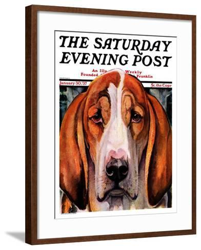 """""""You Ain't Nothing But a Hounddog,"""" Saturday Evening Post Cover, January 30, 1937-Paul Bransom-Framed Art Print"""