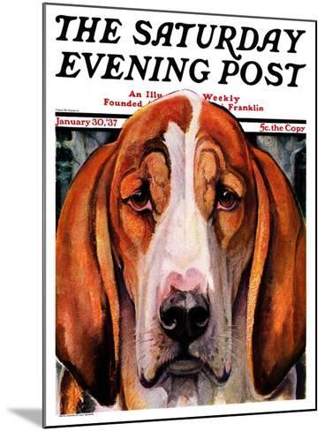 """""""You Ain't Nothing But a Hounddog,"""" Saturday Evening Post Cover, January 30, 1937-Paul Bransom-Mounted Giclee Print"""