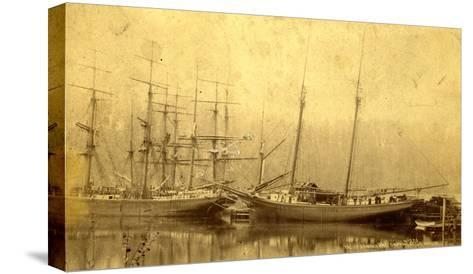 State of Washington Views: Schooner Vine (ca. 1890)--Stretched Canvas Print