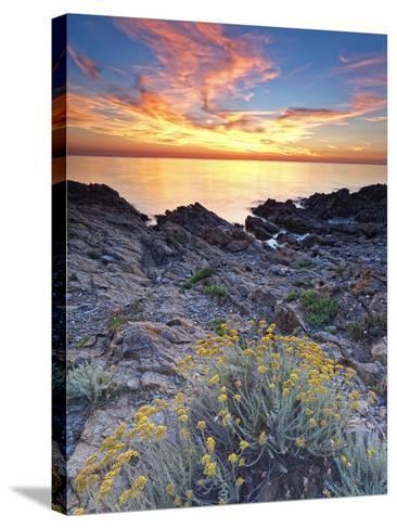 Italy, Sardinia, Olbia-Tempio District, Budoni, Coastline-Francesco Iacobelli-Stretched Canvas Print