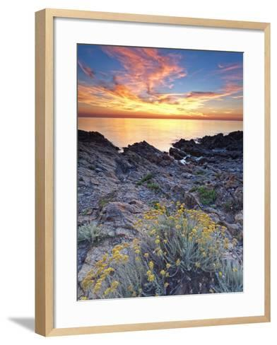 Italy, Sardinia, Olbia-Tempio District, Budoni, Coastline-Francesco Iacobelli-Framed Art Print