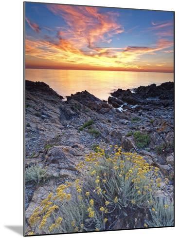 Italy, Sardinia, Olbia-Tempio District, Budoni, Coastline-Francesco Iacobelli-Mounted Photographic Print