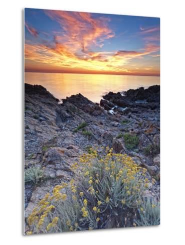 Italy, Sardinia, Olbia-Tempio District, Budoni, Coastline-Francesco Iacobelli-Metal Print