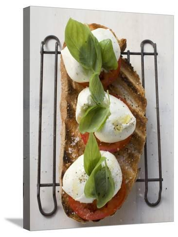 Tomatoes, Mozzarella and Basil on Toasted Bread--Stretched Canvas Print