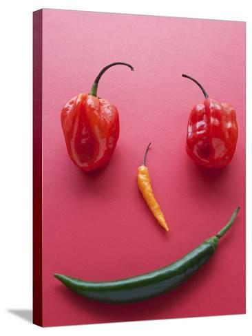 A Face Made of Chilli Peppers-Malgorzata Stepien-Stretched Canvas Print