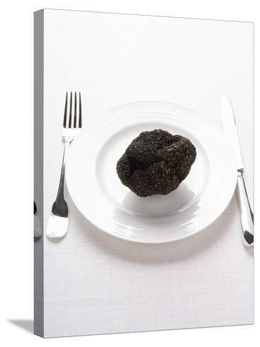 A Truffle on a White Plate--Stretched Canvas Print