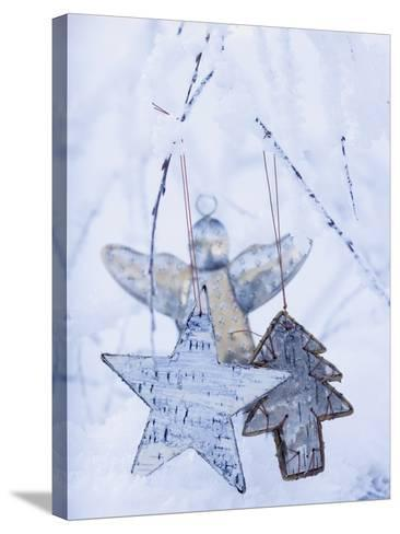 Stars and Silver Angel on Snowy Branch--Stretched Canvas Print