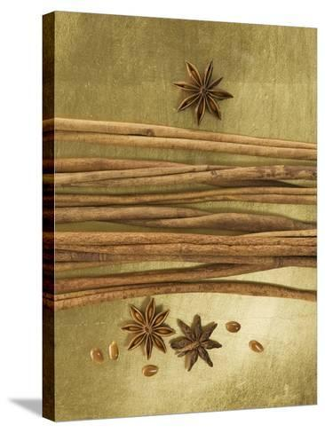 Christmas Spices (Cinnamon Sticks and Star Anise)-Achim Sass-Stretched Canvas Print