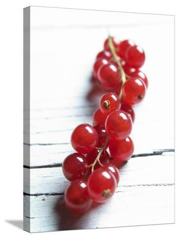 A Bunch of Redcurrants-Brigitte Wegner-Stretched Canvas Print