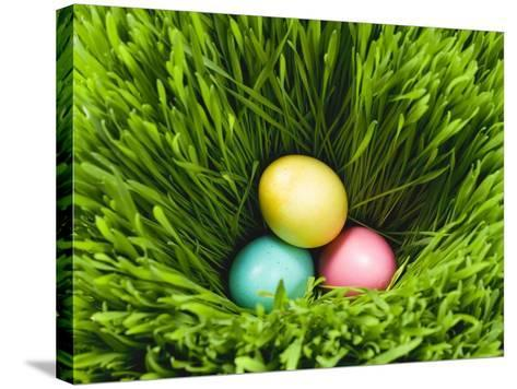 Three Easter Eggs in Grass--Stretched Canvas Print