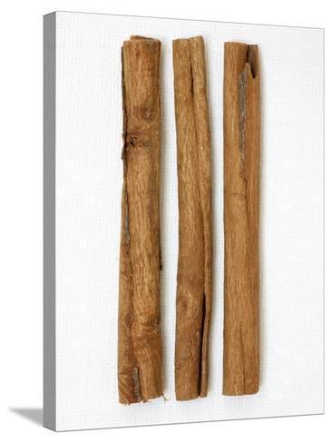 Three Cinnamon Sticks-Frank Tschakert-Stretched Canvas Print
