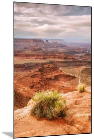 Beautiful Dead Horse Point-Vincent James-Mounted Photographic Print
