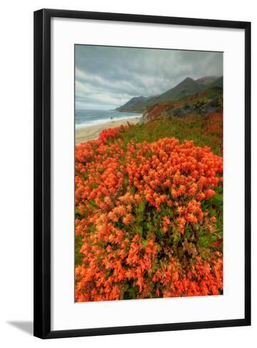 Summer Morning Coastal Color-Vincent James-Framed Art Print
