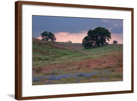 Late Afternoon, Central California-Vincent James-Framed Art Print