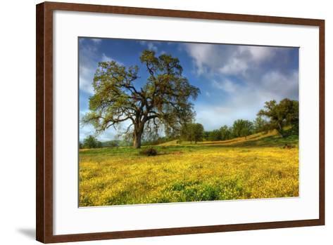 Spring at Shell Creek-Vincent James-Framed Art Print