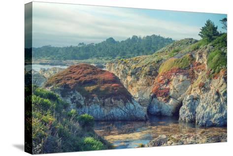 Colorful Point Lobos Seascape-Vincent James-Stretched Canvas Print