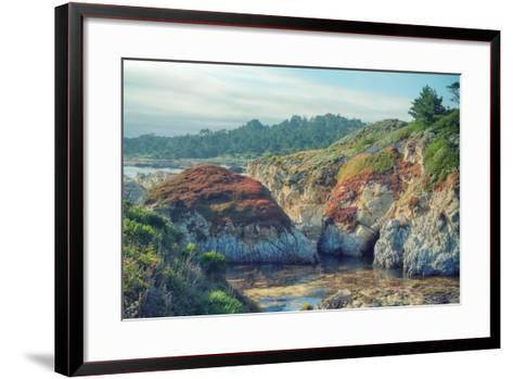 Colorful Point Lobos Seascape-Vincent James-Framed Art Print