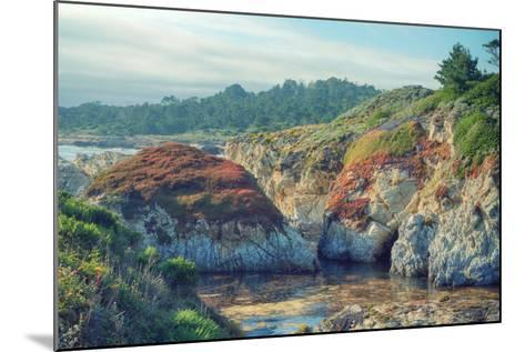 Colorful Point Lobos Seascape-Vincent James-Mounted Photographic Print