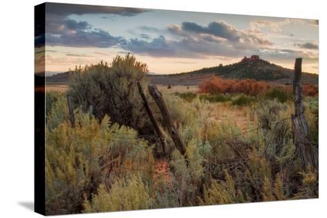 Southern Utah Roadside-Vincent James-Stretched Canvas Print