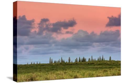 Hana Landscape, Maui-Vincent James-Stretched Canvas Print