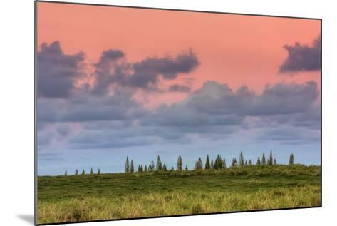 Hana Landscape, Maui-Vincent James-Mounted Photographic Print