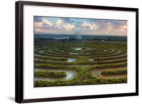 Scene at Kapalua Labyrinth Maui-Vincent James-Framed Art Print