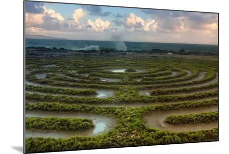 Scene at Kapalua Labyrinth Maui-Vincent James-Mounted Photographic Print