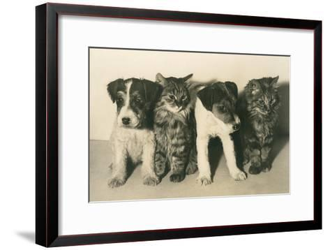 Puppies and Kittens--Framed Art Print