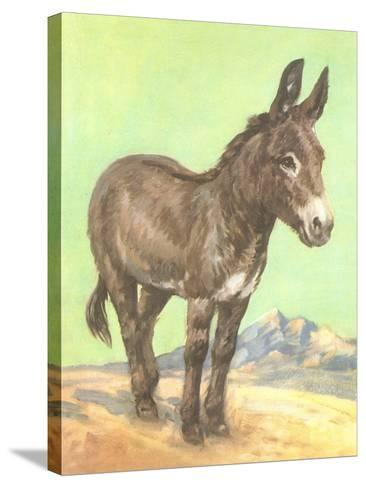 Donkey--Stretched Canvas Print