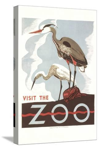 Visit the Zoo, Cranes--Stretched Canvas Print