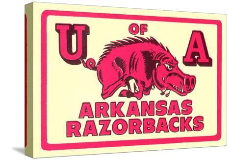 Arkansas Razorback Mascot--Stretched Canvas Print