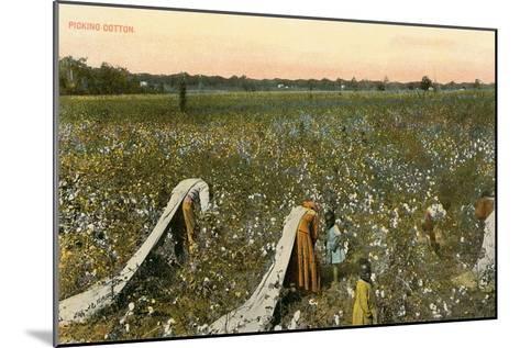 Picking Cotton--Mounted Art Print