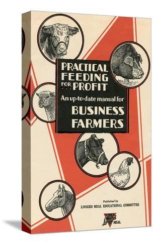 Feeding Manual for Farm Animals--Stretched Canvas Print