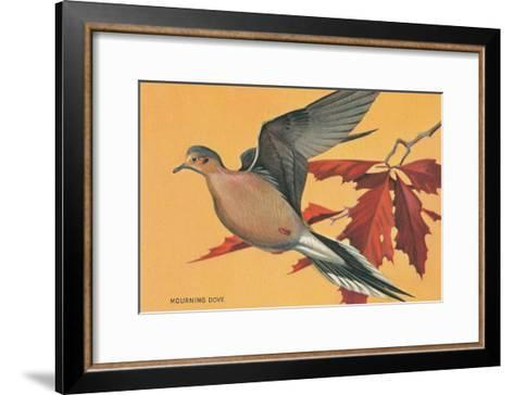 Mourning Dove--Framed Art Print