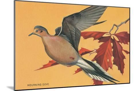 Mourning Dove--Mounted Art Print