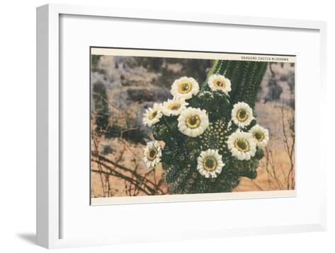 Saguaro Cactus Blossoms--Framed Art Print