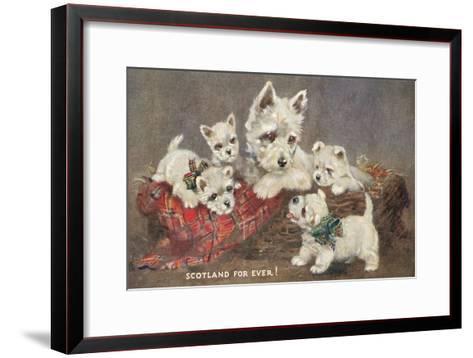 Scotland Forever, Westies--Framed Art Print