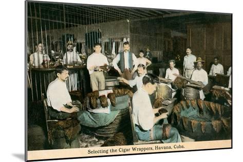 Cigar Wrappers, Havana, Cuba--Mounted Art Print