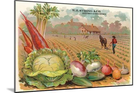 Vegetables, Old Fashioned Farm--Mounted Art Print