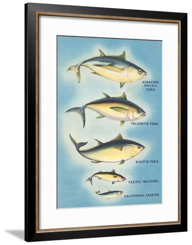 Kinds of Tuna Fish--Framed Art Print