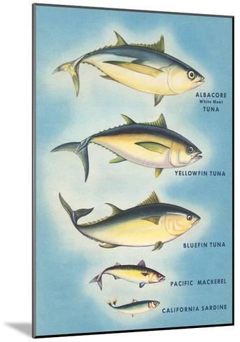 Kinds of Tuna Fish--Mounted Art Print