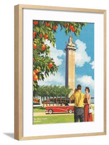 Citrus Tower, Clermont, Florida--Framed Art Print