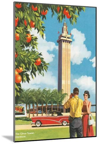 Citrus Tower, Clermont, Florida--Mounted Art Print